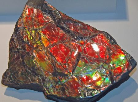 Ammolite: A Marine Fossil Gemstone